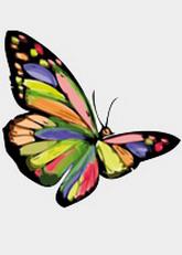 erotic leipzig butterfly mit fernbedienung
